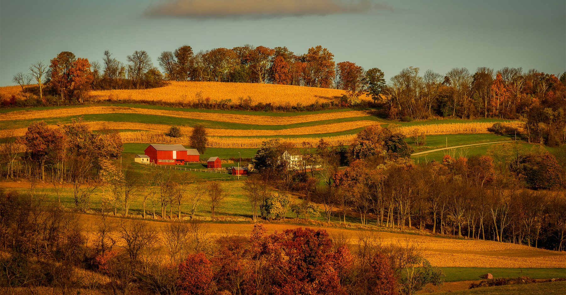 Frederick County - fall landscape